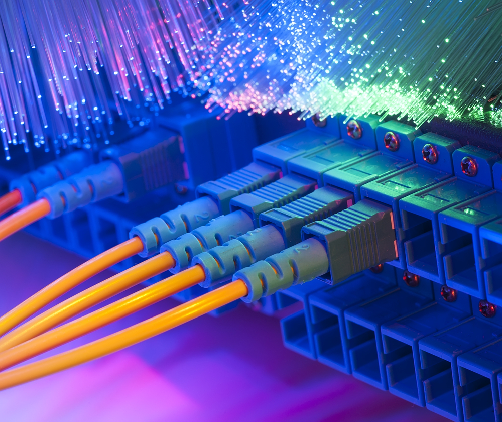 plugs and fiber optic