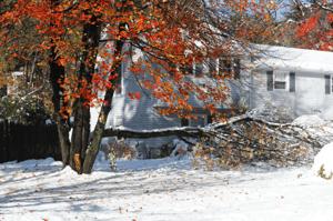 APC winter home