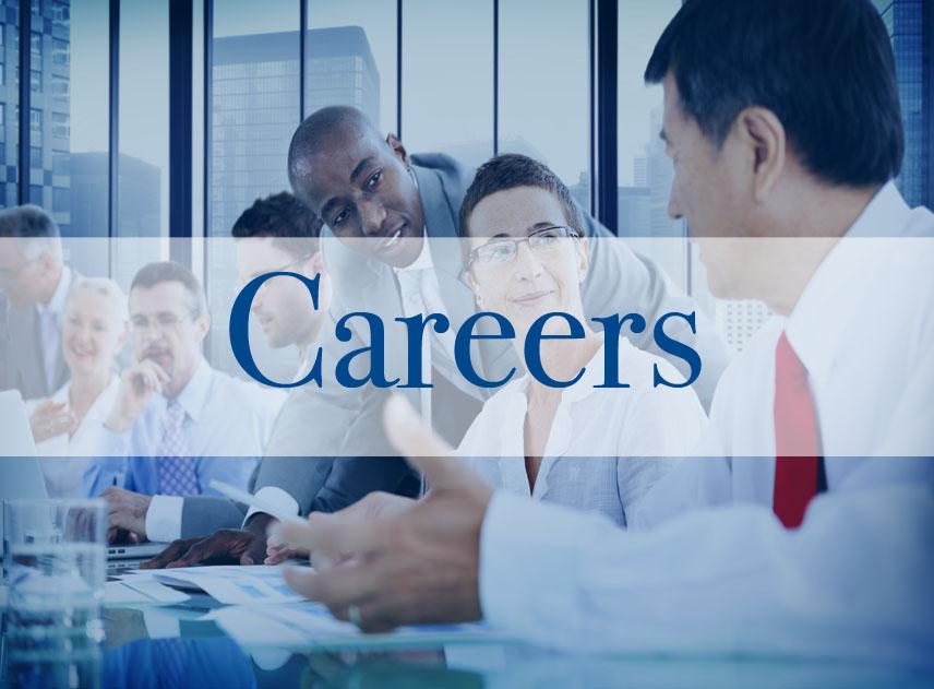 Careers Page careers link